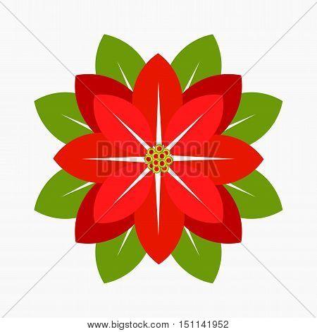 Poinsettia flower symbol of Christmas icon illustration