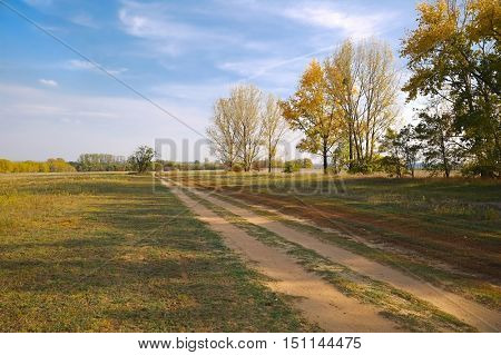 Dry grassy field in the country