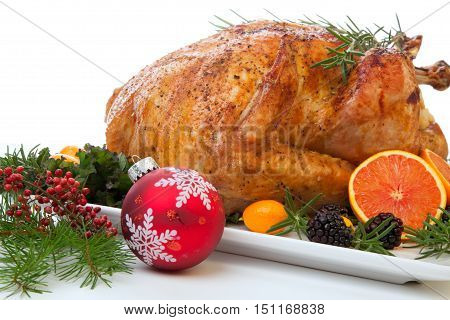 Stuffed Roasted Turkey On White