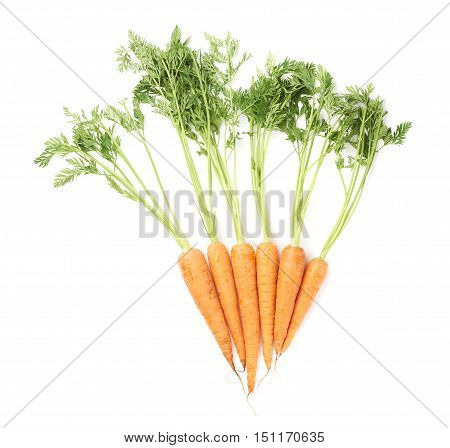 Bunch of unpeeled carrot with the green top isolated over white background