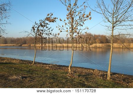 Lakeside landscape with the water frozen