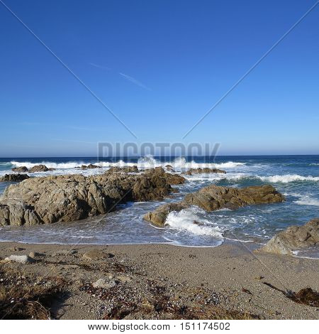 This is an image of the rocky shore of Asilomar Beach in Pacific Grove, California.