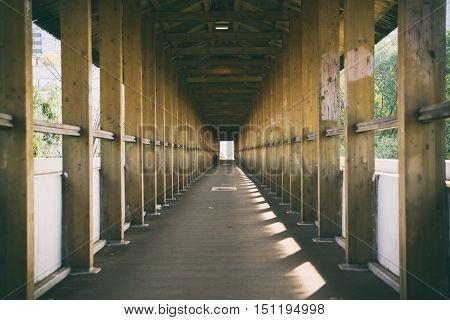 Long Wooden Bridge, Wooden Background, A Bridge In The Park