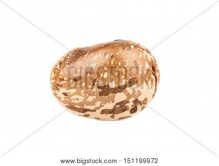 Kidney Bean Isolated