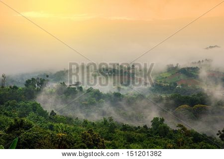 beautiful scenary in Thailand over the valley of mountain at sun rising giving a beautiful color on the mist in the field