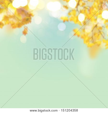 Fall yellow and orange maple leaves on blue sky defocused abstract background