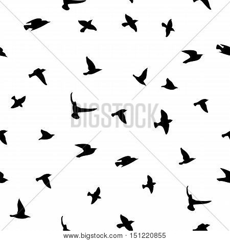 Seamless vector background with silhouettes of birds .