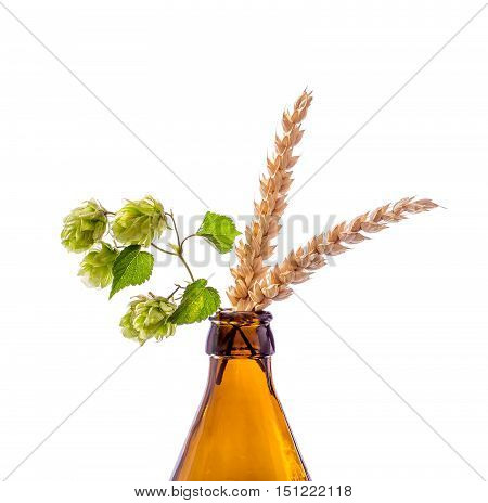 Beer bottle with hop wheat branch, isolated