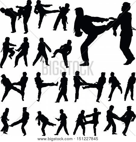woman practice taekwondo in pairs silhouette vector