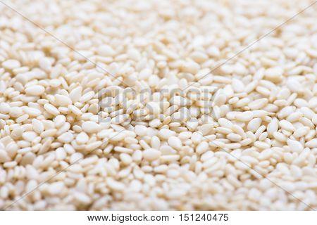 White sesame seeds background. White sesame seed closeup.