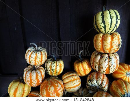 Stacked multi colored carnival squash next to an old barn