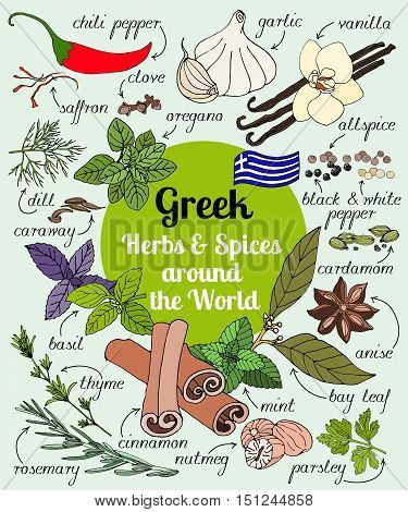 Vector set of hand drawn Greek herbs and spices.