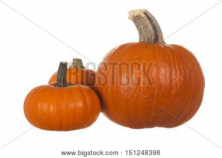 Three Small Orange Pumpkins Isolated on White Background