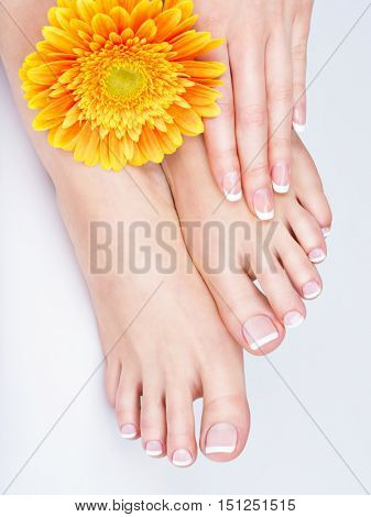 Closeup photo of a female feet at spa salon on pedicure and manicure procedure - Soft focus image