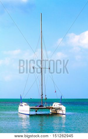 white catamaran floats in the sea on turquoise water