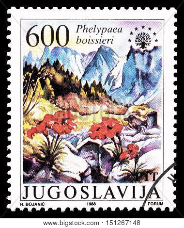 YUGOSLAVIA - CIRCA 1987 : Cancelled postage stamp printed by Yugoslavia, that shows Stapf.