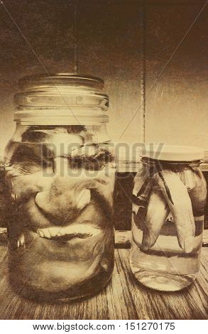 A gruesome image of a decapitated head of a monster with sparkling teeth and fingers preserved under a liquid in glass jars halloween background concept