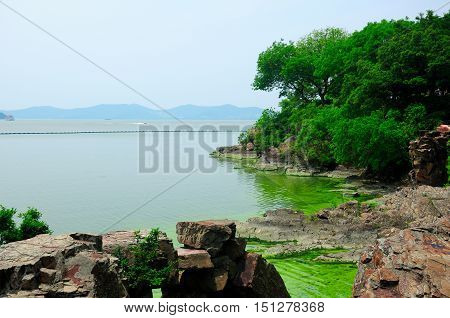 The rocky coast line of Taihu or Lake Tai scenic area in Wuxi China in Jiangsu province with an algae bloom near shore.