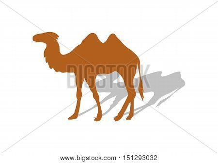 Transportation of goods by camel. Worldwide warehouse deliver through Africa. Logistics shipping and distribution. Camel with shadow. Loading and unloading. Part of series of worldwide delivery