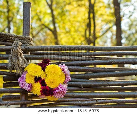 Beautiful autumn chrysanthemum flowers. Beautiful bouquet on the wooden background on nature