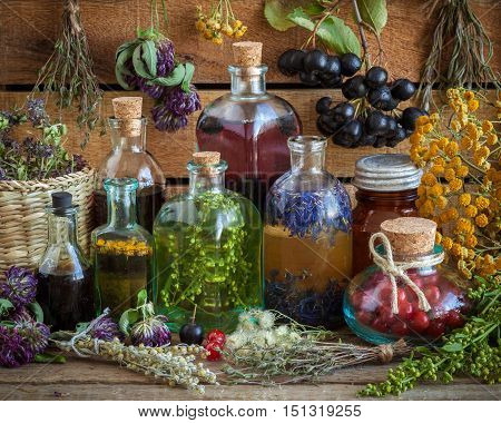 Bottles Of Tincture, Potion, Oil, Healthy Berries And Healing Herbs. Herbal Medicine.