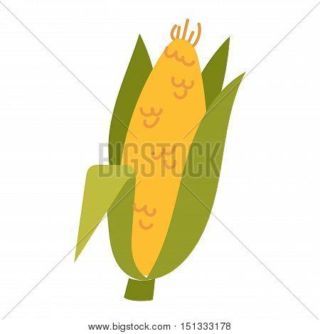 Corn cobs vector illustration. Healthy grain maize vegetable cob corn. Yellow agriculture farm ingredient corn. Nature harvest golden popcorn kernels sweet vegetarian sweet corn seed.