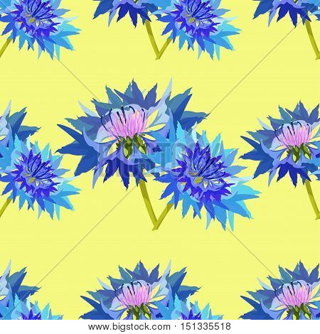 Seamless Pattern Of Wild Flowers Cornflower Couple On A Yellow Background. Vector Illustration