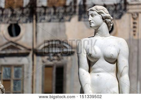 Pretoria Fountain In Palermo, Sicily
