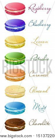 Macaron macarons macaroons cookie taste flavor savor style variety types kinds list carte. Vector vertical closeup side view beautiful sign illustration makaron macarone isolated on white background