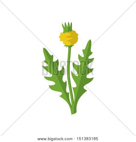 Lawn weed malicious sign. Garden weed silhouette with flower. Bad harmful plant logo.