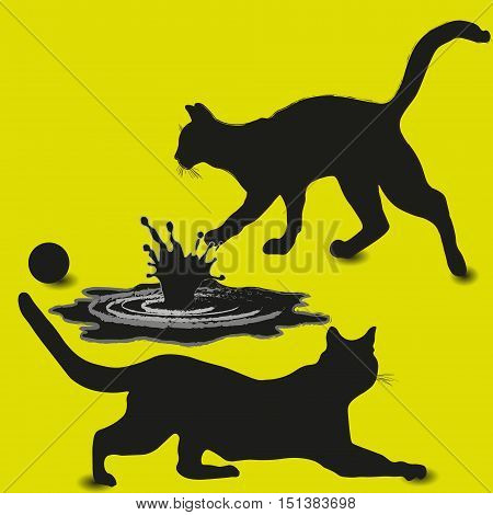 Two cat and a pool composition Design picture silhouette style pet game ball splashing water drop shadow and light movement, eps10 vector illustration Stock