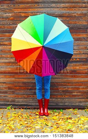 Autumn Photo Woman Holding Colorful Umbrella Wearing A Red Rubber Boots Over Wooden Background Yello