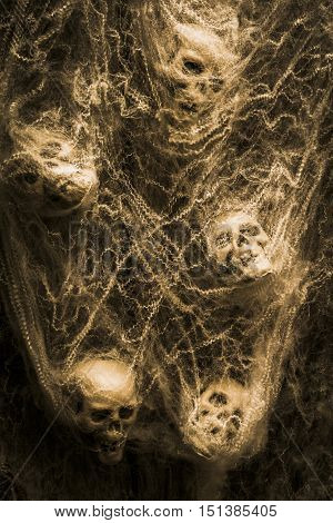 Creative sepia horror art of human skulls hanging in spider webs. Web of entrapment