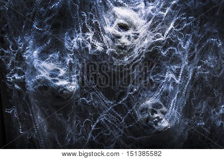 Evil blue halloween scene on a group of monster skulls bound up in cobwebs. Tangled in fear