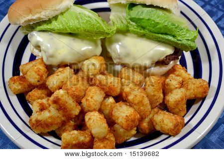 Two Cheese Burgers and Potato Tots