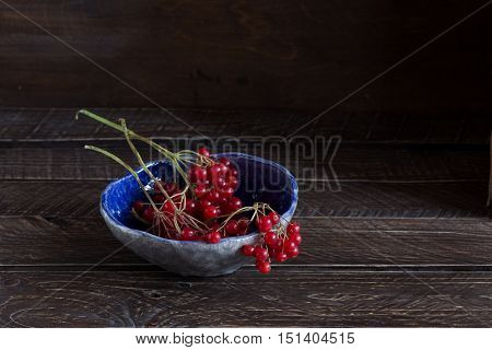 red viburnum in a blue ceramic bowl red viburnum on a brown background