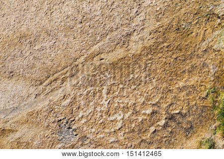 textured surface silt or ooze of brown color for a natural background and for wallpaper