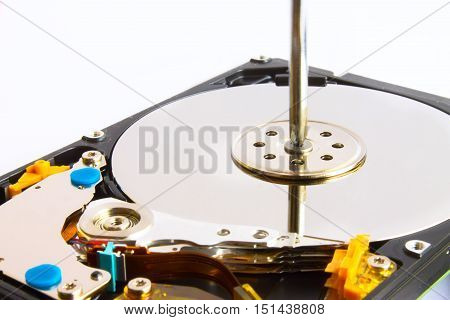 Hdd Repair Screwdriver And Screws On A White Background