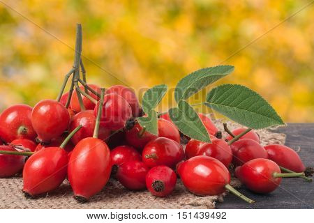 fresh rose hips on a dark board with sackcloth and a blurred background.