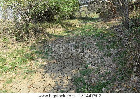 Dry Bottom Bed River