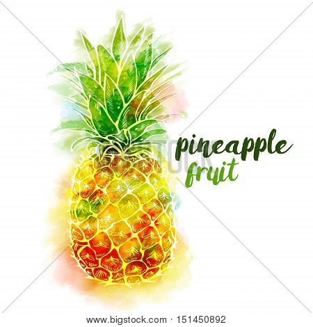 Bright color pineapple fruit and lettering on white background with watercolor stains. Print t-shirt, graphic element for your design. Vector illustration.