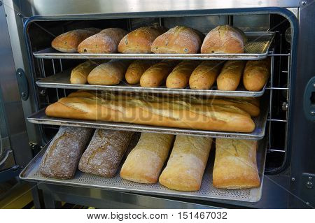 loaf of freshly baked bread from the oven in a modern bakery