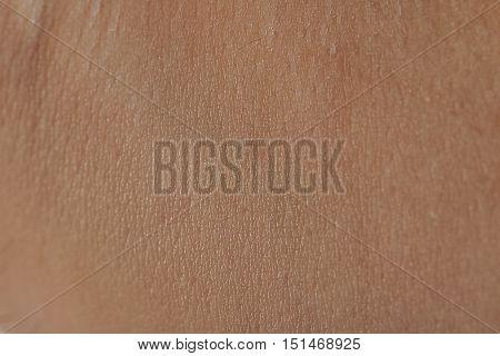 Close Up Of Human Skin Cells