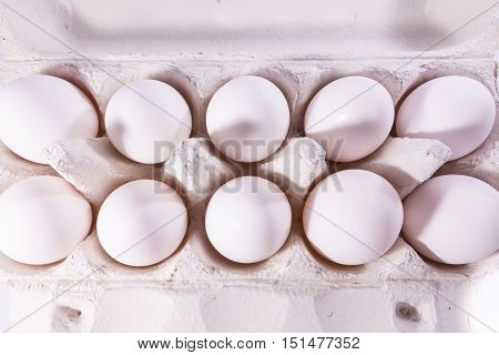 Eggs Package Tray Material Cardboard Fresh Ingredient Cooking Shells White Unbroken Isolated Background Blank