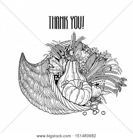 Graphic cornucopia drawn in line art style. Thanksgiving day art. Vector illustration isolated on white background in black colors.