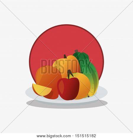 several fruits on platter icon emblem image vector illustration design