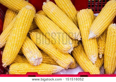 Raw corns in red basket. Top view selective focus.
