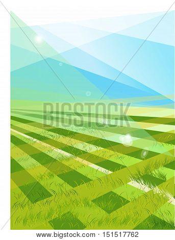 beautiful pattern of fresh green grass for football sport. vector football field, soccer field, team sport texture
