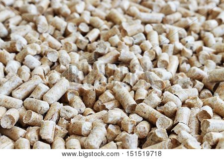 Biofuels Alternative biofuel from sawdust combustion in furnaces. Wood pellets to the soil. Biofuels. The cat litter.