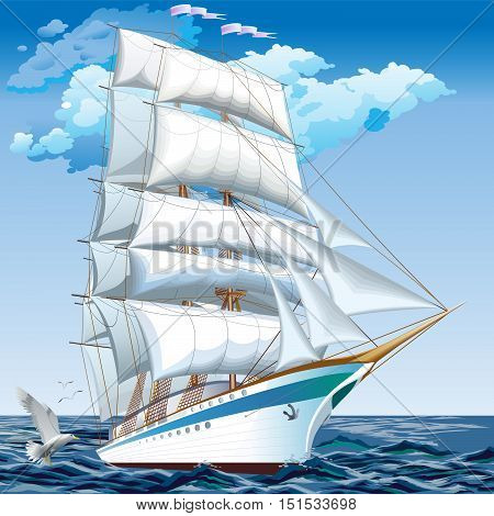 Best cruise ships. collection of yachts, ships and boats